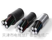 MYP/MYPTJ/MYTP-天津市电缆总厂橡塑电缆厂- 矿用电缆_矿用通信电缆