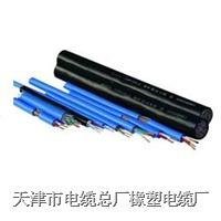 天津电缆|橡套线 yc,ycw,yz