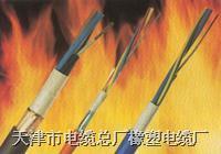 低烟无卤电缆产品 天津市电缆总厂橡塑电缆厂