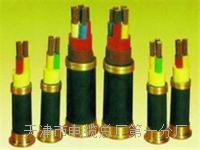 500对通信电缆_电缆专卖 500对通信电缆_电缆专卖