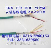DJYP2VR电缆结构图 DJYP2VR电缆结构图