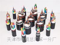 AVP电缆国标型号厂家 AVP电缆国标型号厂家