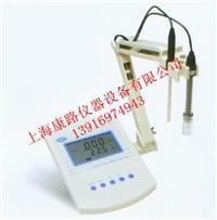 上海生产经济型电导率仪促销甩卖 DDS-307
