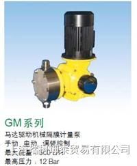 GM机械隔膜计量泵 GM0120