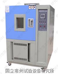低温恒定湿热试验箱 DHS系列