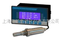 固定式漏点检测仪 DP200