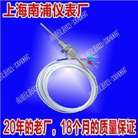 带螺纹竿式热电阻 WZP-291