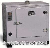 GZX-DH.202-2-BS电热恒温干燥箱 GZX-DH.202-2-BS电热恒温干燥箱