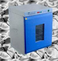 GZX-DHS.600-BS-II电热恒温培养箱 GZX-DHS.600-BS-II