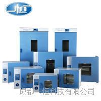 成都一恒电热恒温鼓风干燥箱 DHG-9070A