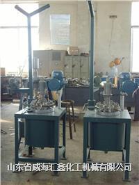 实验室高压反应釜 GSH