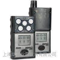 ISC英思科便攜式多氣體檢測儀MX6 MX6