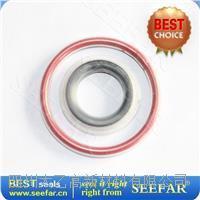 四氟包覆圈 外芯FEP 内芯硅橡胶