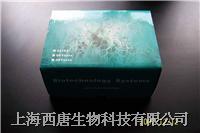 白介素3(IL-3)试剂盒 96