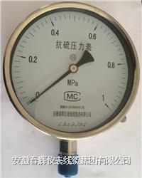 抗硫壓力表