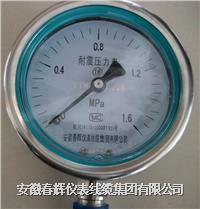 不鏽鋼耐震壓力表 YBFN-100  YBFN-150