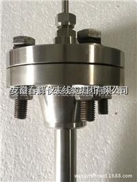 法蘭抽芯式铠裝熱電阻 WZPK-431