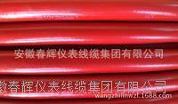 BPLTER-GS變頻電纜 BPLTER-GS  ZC-BPLTER-GS
