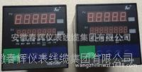 SWP-LK901-02--F-HL-P-W智能流量積算控制儀 SWP-LK901-02--F-HL-P-W  SWP-LK901-01-A-HB
