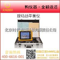 便携式现场动平衡仪 LC820