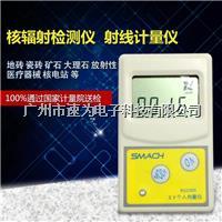 RG1000核辐射检测仪大理石射线辐射测试仪个人剂量仪放射性报警仪RG1000 RG1000