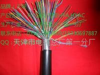 索道通信电缆-HYAC规格使用 HYAC