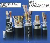 HYV-市话电缆厂价 HYV