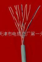 自承式全塑电缆厂价  HYAC