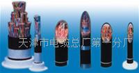 KFFP22-2*0.5高温铠装电缆规格使用 KFFP22-2*0.5