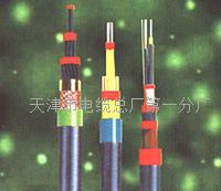 JYP2V-2计算机电缆厂家直销 JYP2V-2