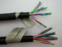 铝护套铁路信号电缆PTYL23高清图