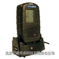 五合一檢測儀EntryRAE PGM-3000