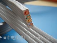 铠装RS-485通讯电缆1*2*0.75型号