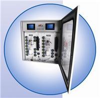 重金属汞在线监测系统 AVVOR 9000