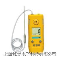 光离子化有机蒸气检测仪FT613 FT-613