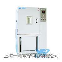低溫箱,上海低溫試驗箱 YSGDW