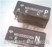 MS1250D225N/P 吸收模块 MS1250D225N/P 专业现货销售