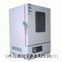大型烤箱 ZB-TL-234L