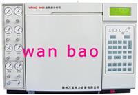 油气相色谱分析仪 WBGC-6800