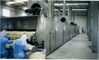 DWT系列脱水蔬菜干燥机 DWT