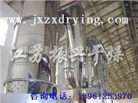 酱油粉专用干燥设备 DW