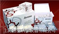 血基因组中量制备试剂盒
