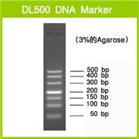 DL500 DNA Marker |3590A |TAKARA进口原装|现货当日发