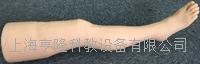 针灸腿部训练模型 ZK/100011F