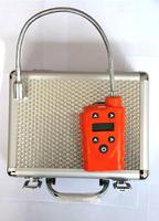 便携式气体检测仪 DN-B1000