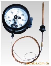 电接点压力式指示温度计 WZT-288