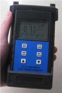 辐射剂量率仪REN500E