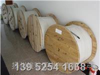 船用电缆 - 船用通信电缆 CHJPF86/SC
