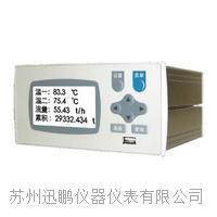 苏州迅鹏WPR22FC-VKR温压补偿流量积算仪 WPR22FC
