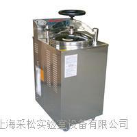 灭菌器100LG CS-YXQ-LS-100G